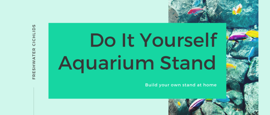 do it yourself aquarium stand